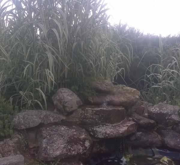 Bassins 2
